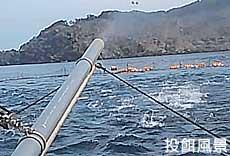 菊谷茂吉商店|漁業・養殖関連事業